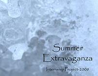 Internship with Orient Craft Pvt. Ltd. - 2008