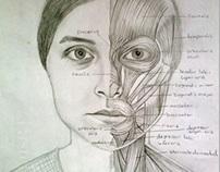 Anatomical Portrait