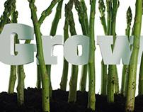 Asparagus Growth