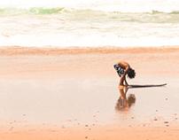 O Algarve caminha