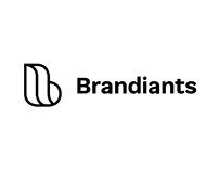 Brandiants 2017 - Branding