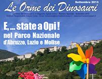 N° 0 Settembre 2013 - Le orme dei dinosauri