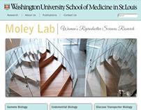 WUSTL WRSR Lab Websites
