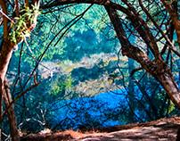 RHODES ISLAND_7 SPRINGS LAKE_SUMMER 2013