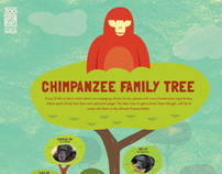 Houston Zoo Education Poster 2011
