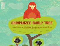 Houston Zoo Education Poster 2011