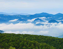Haywood County Tourism