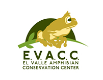 E.V.A.C.C. Identity