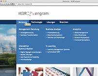 SAP Beratung, Website