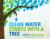 Clean Water Starts With A Tree