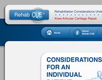 Rehab CUE website