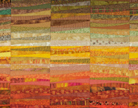 The Quilts of Ann Brauer--Abstract landscapes in fiber