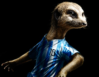 Soccer stars #10 for Finnish national betting