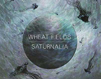 Record Cover Illustration for Wheat Fields