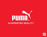 Puma Pitch
