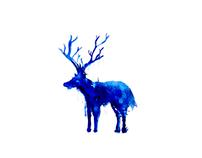 Deer M*