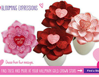 Blooming Expression Product Page