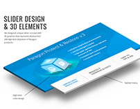 Paragon Software Group Web design