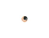Meteorite / Earring