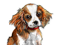 The DogFather Illustrations