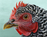 """Realistic Chicken"""