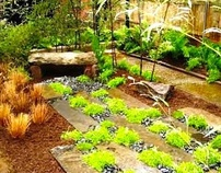 mw design group llc Harlem garden