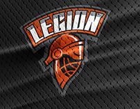Create logo for hockey team