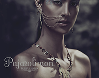 PAJAROLIMON CATALOG 2013