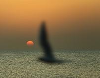 Sunrise in Al Khobar ,  Saudi Arabia