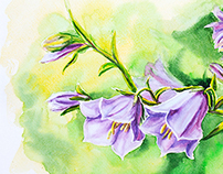 Flowers. Watercolor painting