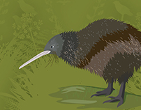 Kiwi facts and habitat poster