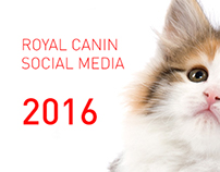 Royal Canin | Social Media Design