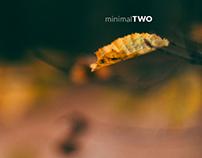minimal two