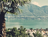 __Picture Swiss 16