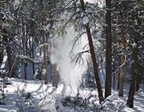 Snow Dumping Trees