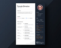 Free Personal Sketch Resume Template with Timeline