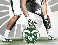2015 Colorado State Football Roster Cards