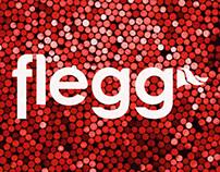 Flegg