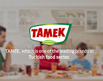 TAMEK Institutional Website