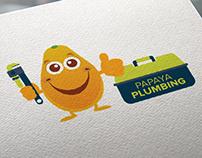 Papaya Plumbing // Brand Identity