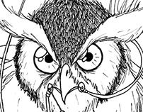 Oliver's Owl