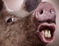I love My Pig