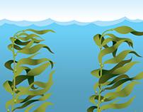Illustration: Kelp & Salamander's Life (2011)