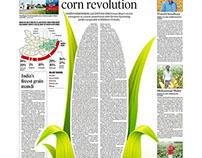 Corn Revolution