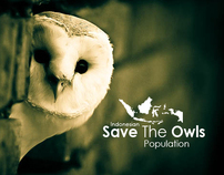 The Owls Campaign