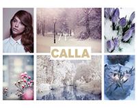 Calla Workshop