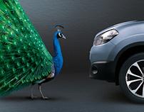 Nissan Bird illustrations