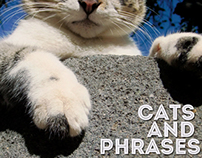 Cats and phrases