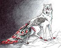 White Wolf- Peacock Hybrid