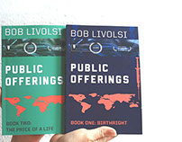 Public Offerings Book Cover
